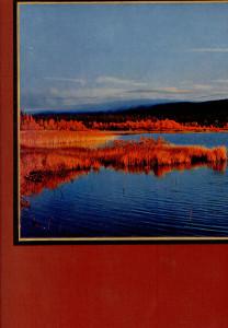 Lumoava Lappi Pohjois-Suomen kauneutta,